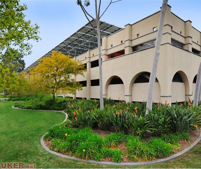 加利福尼亚理工学院(California IT)照片