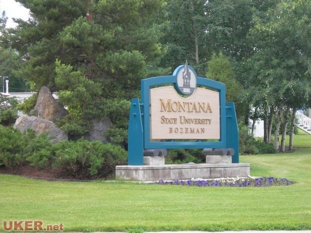 蒙大拿州立大学(Montana State)照片