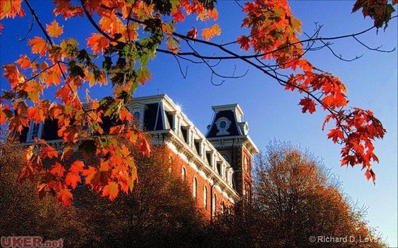 阿肯色大学(Arkansas)照片