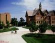蒙大拿大学